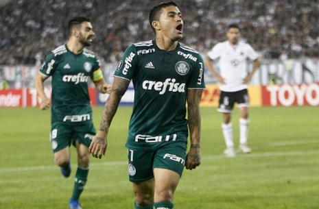 Maillot Palmeiras 2018 2019 Domicile