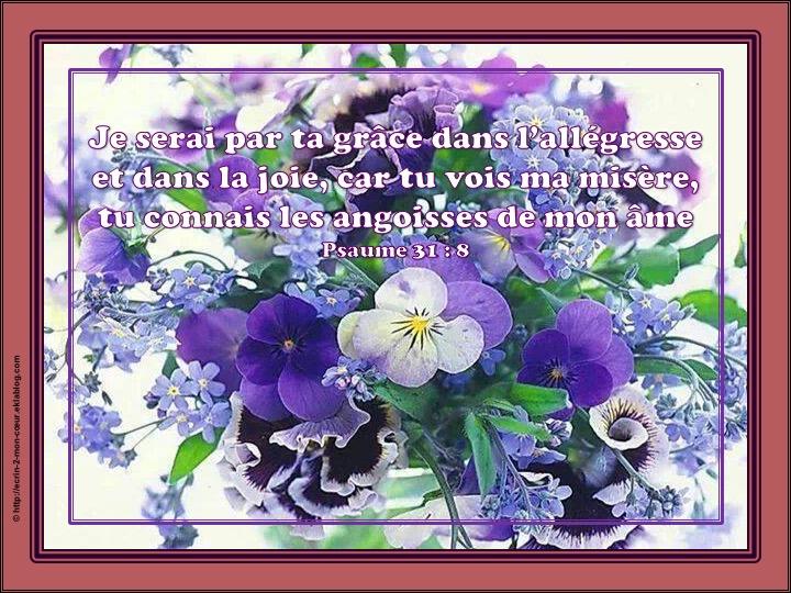 Je serai par ta grâce dans l'allégresse - Psaumes 31 : 8