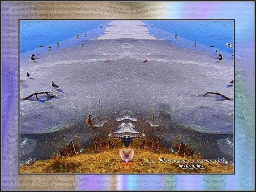 Le décollage du canard
