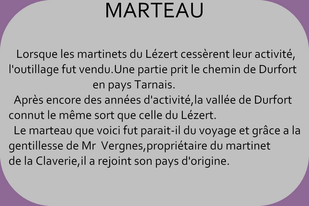 MARTINET DE LA RAMONDE (AVEYRON)