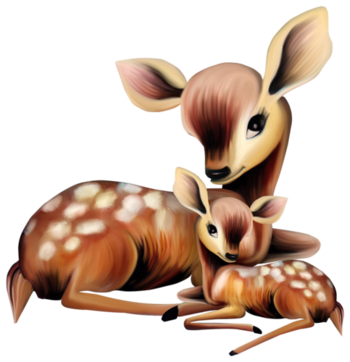 Antilopes, Biches, Faons, chevreuils, cerfs, Deer
