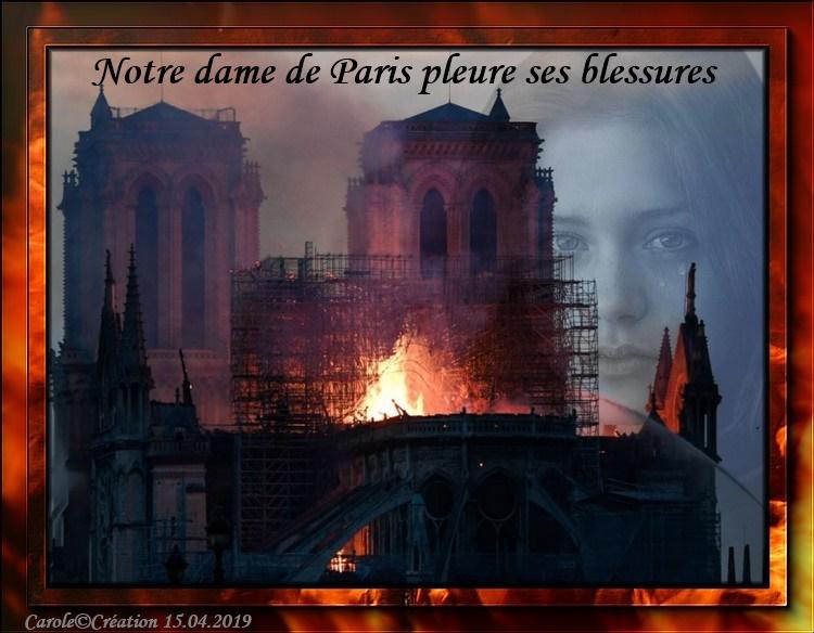 Notre Dame de Paris pleure ses blessures