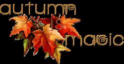 L'automne en octobre