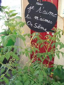 Marche_des_halles_et_de_la_terrasse__29