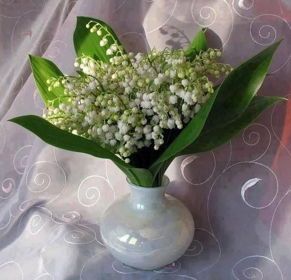 Bouquet de fleurs 4