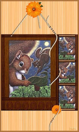 ecureuilfeuille