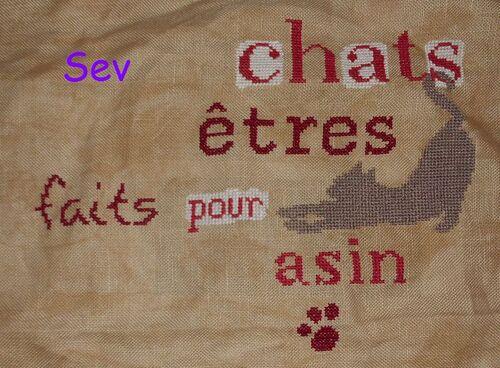 "SAL "" Les Chats"" - 7"