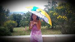 Parapluies dans le Var