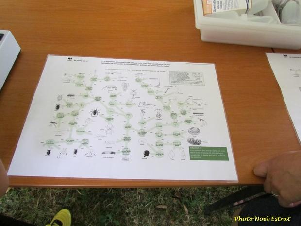 Rivières et sources au pays des Douix