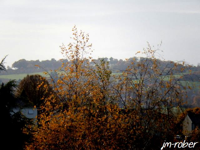 "Quand l'automne "" ses feuilles"""
