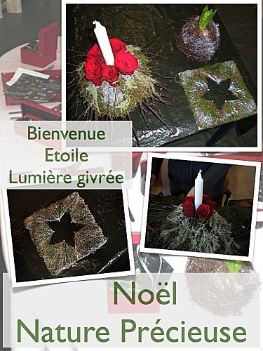 noelnaturebienvenue.001