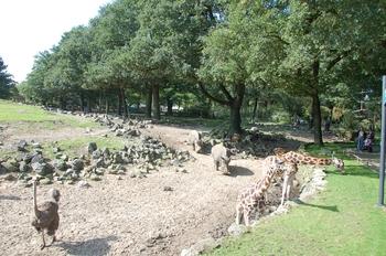 dierenpark emmen d50 054