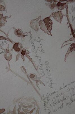 La Fête à la Roseraie - 2014 - (9/11)