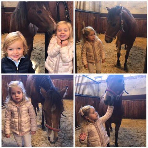 Nouvelles photos de Leonore et Nicolas de Suède avec le cheval Heidi