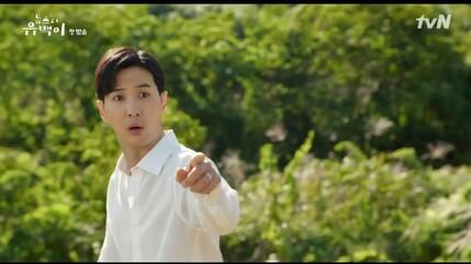 *Nouveaux Dramas : Top Star Yoo Baek & Where Stars Land*