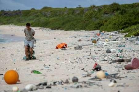 Un homme nettoie une plage de l'île Henderson dans le Pacifique, le 14 juin 2019. © Iain McGregor, Stuff, AFP, Archives
