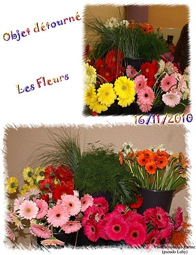 16 11 2010 les fleurs