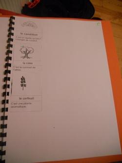 Cahier de mots nouveaux