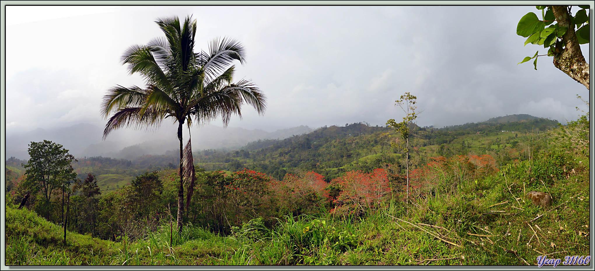 Paysage de l'est du Costa Rica sous un ciel menaçant