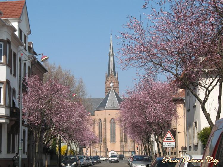 Ciel d'Alsace 155