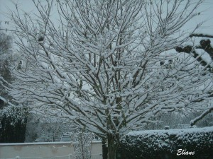 tombe-la-neige.png