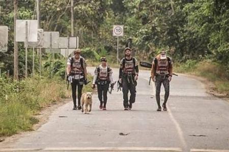 Le chien Arthur a suivi l'équipe suédoise pendant les 32 derniers kilomètres !