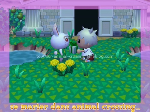 se marier dans animal crossing