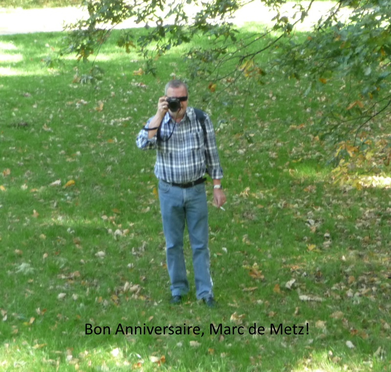 """D'autres """"insolites"""" de Metz..."""
