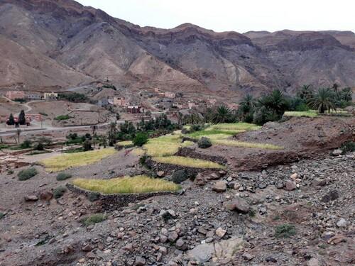Une partie de vallée cultivée