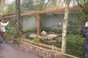 dierenpark amersfoort d50 2011 012