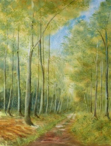 En Forêt d'Eu...