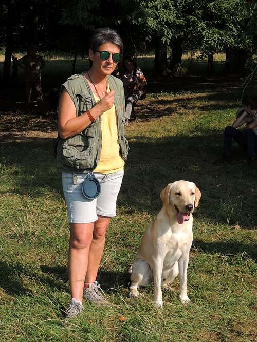 Seminaire retriever