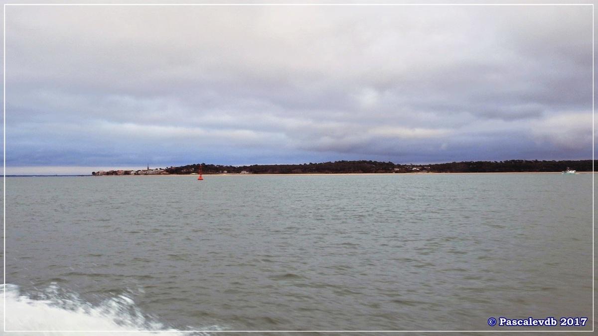 Traversée du Bassin entre Arcachon et le Cap Ferret - 11/14