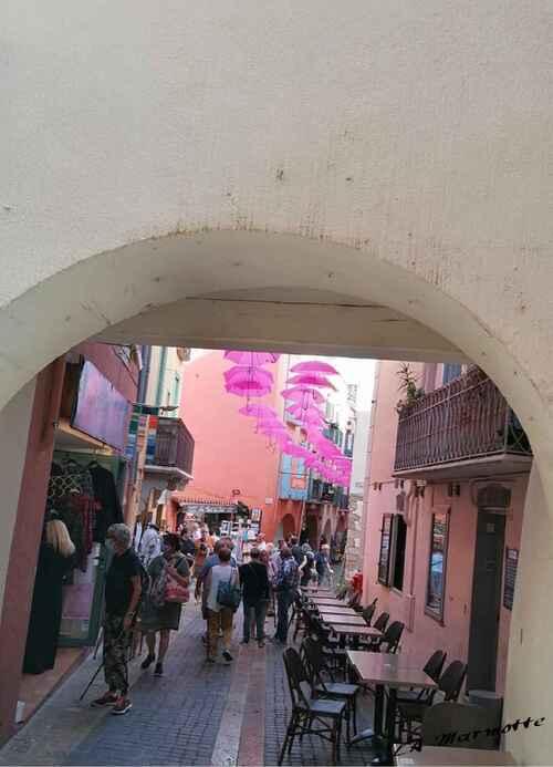 Collioure ...