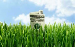 greenwashing1