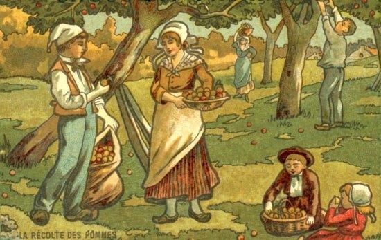 La récolte des pommes. Chromolithographie du XXe siècle