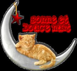 Tags Bonne Nuit