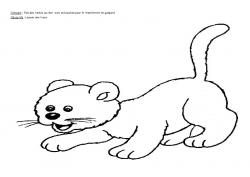 Graphisme: tâches du chat