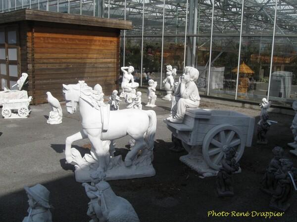 Une visite à la jardinerie de Villiers le Sec, par René Drappier