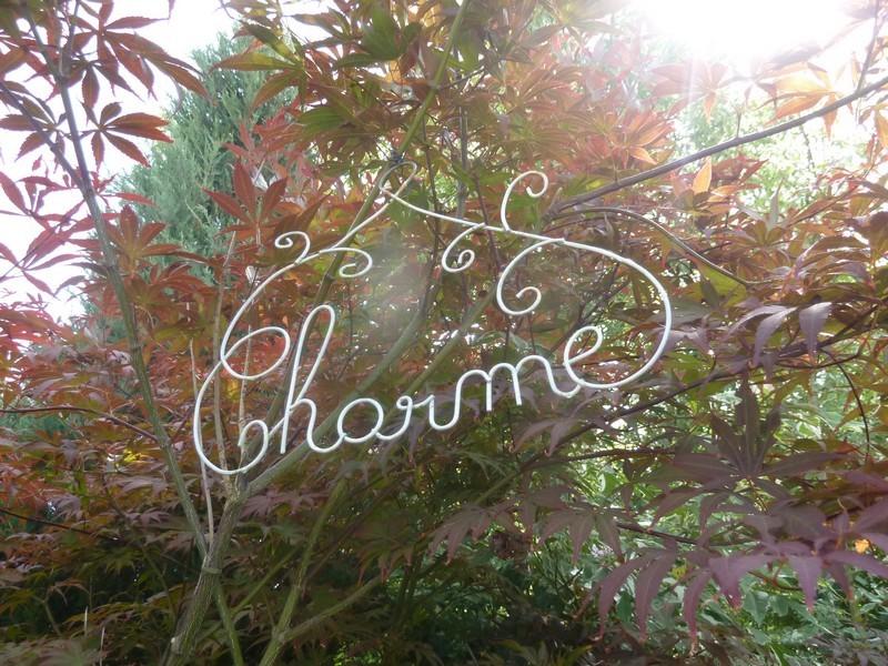 Au jardin mi-octobre ...