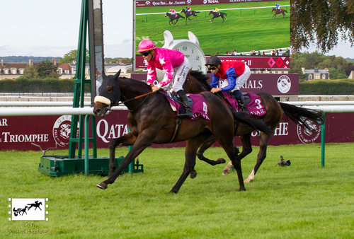 Qatar Prix Foy