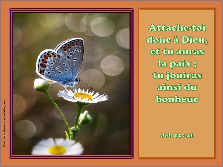 Attache-toi donc à Dieu, et tu auras la paix - Job 22 : 21