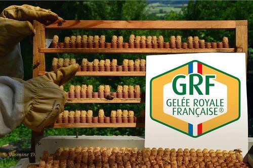 Le GPGR ajoute des couleurs à son logo !