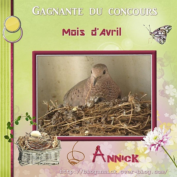 2012-04-30-Gagnante Concours Avril-Annick