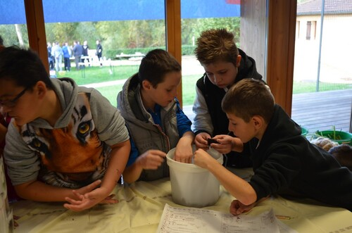 Fête de la science à Pont-de-Vaux