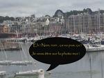goeland, concarneau, ville close, bateaux