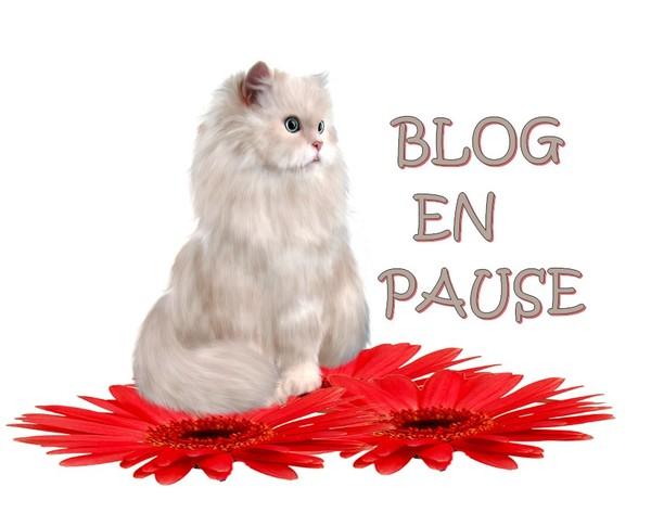 Blog en pause 2 semaines (du 9/4 au 22/4/2018 inclus)