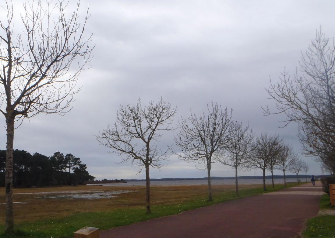 Après un petit tour a l'Ocean, nous allons au lac de LACANAU