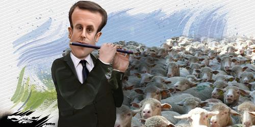 dessin de JERC du mardi 05 décembre 2017 caricature Emmanuel Macron Ce qui vient par la flûte s'en va par le tambour www.facebook.com/jercdessin