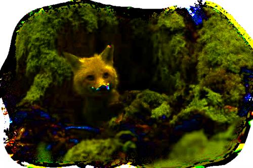 tube souris rat hamster.....